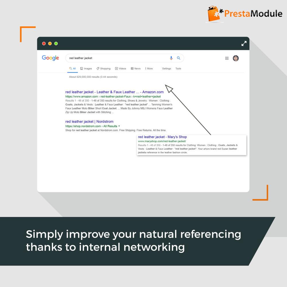 module - SEO - SEO Internal Linking PRO - Internal links for SEO - 1