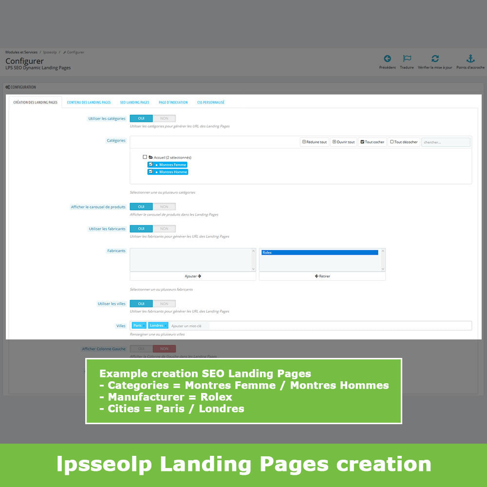 module - SEO (Referenciamento natural) - SEO Dynamic Landing Pages - 3