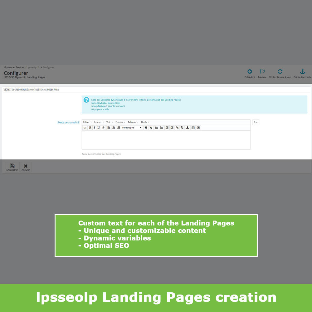 module - SEO (Referenciamento natural) - SEO Dynamic Landing Pages - 6