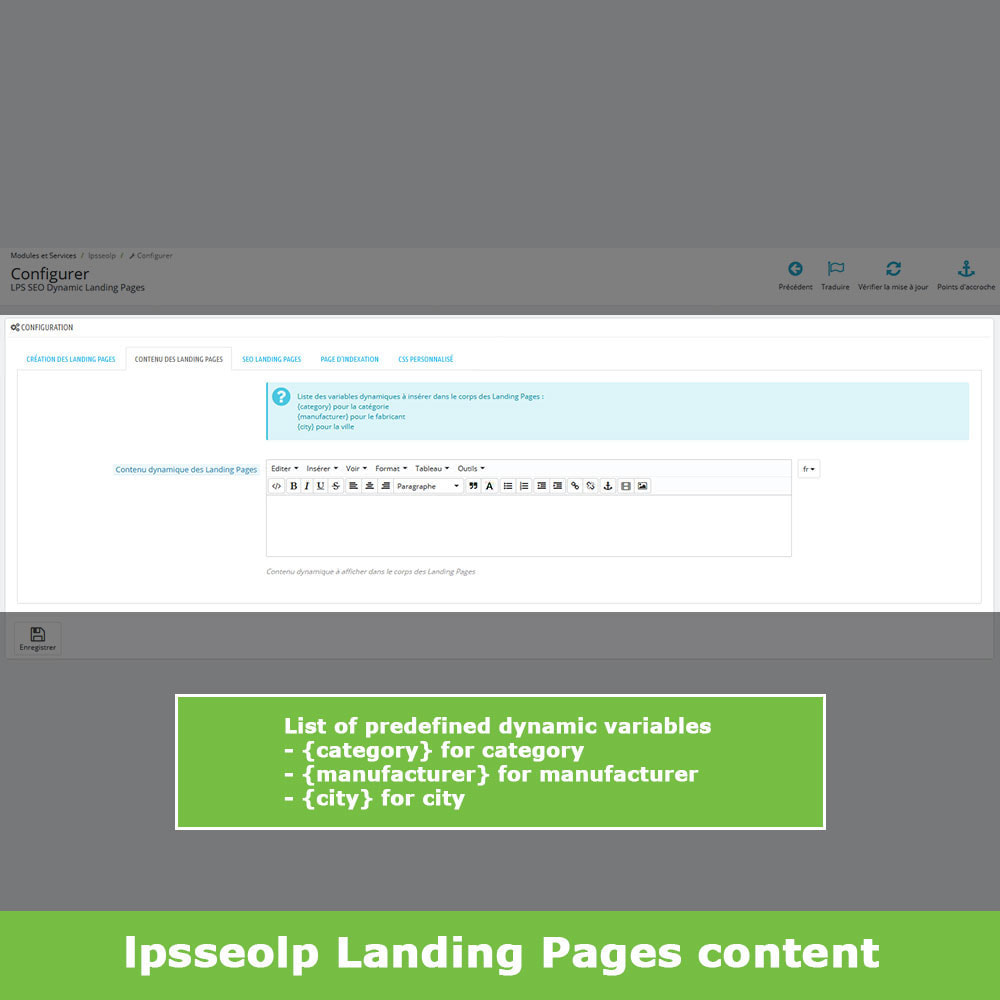 module - SEO (Referenciamento natural) - SEO Dynamic Landing Pages - 7