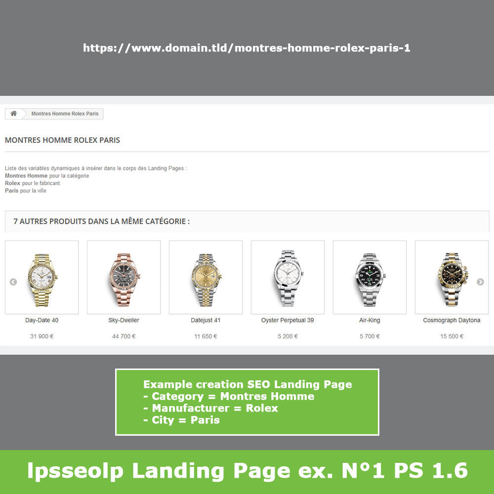 module - SEO (Referenciamento natural) - SEO Dynamic Landing Pages - 11