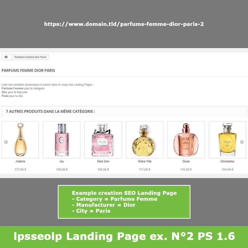 module - SEO (Referenciamento natural) - SEO Dynamic Landing Pages - 13