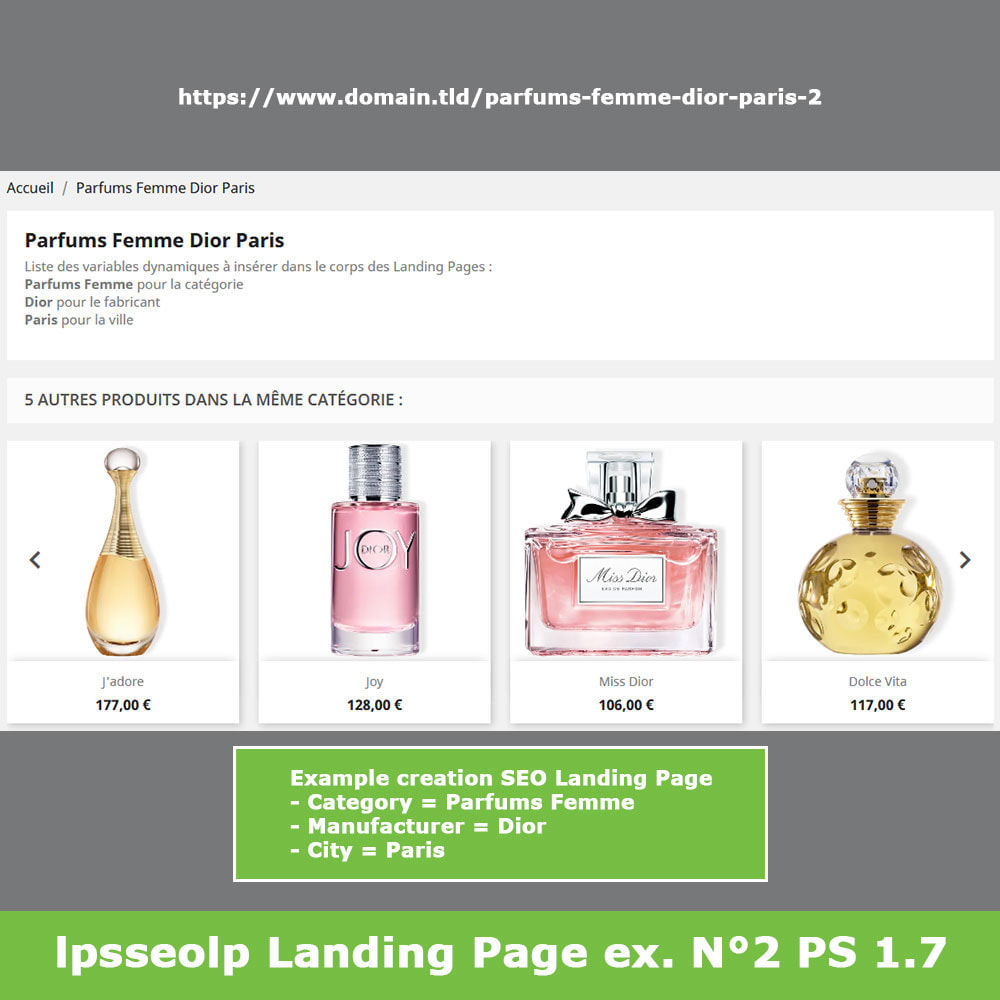 module - SEO (Referenciamento natural) - SEO Dynamic Landing Pages - 14