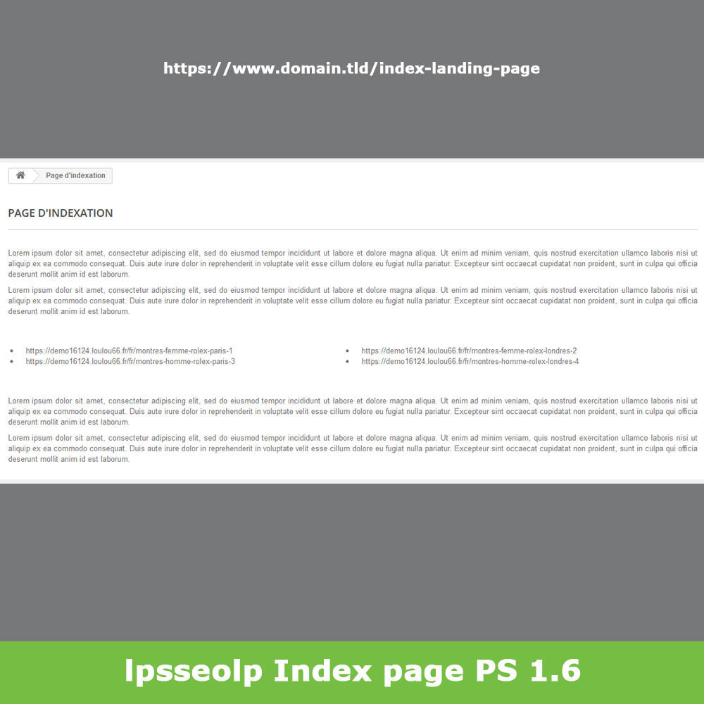 module - SEO (Referenciamento natural) - SEO Dynamic Landing Pages - 17
