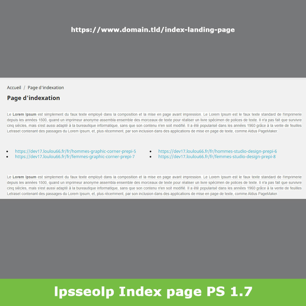 module - SEO (Referenciamento natural) - SEO Dynamic Landing Pages - 18