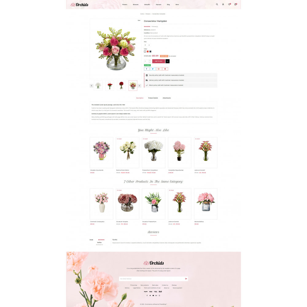 theme - Gifts, Flowers & Celebrations - Orchid - Flower Market - 5