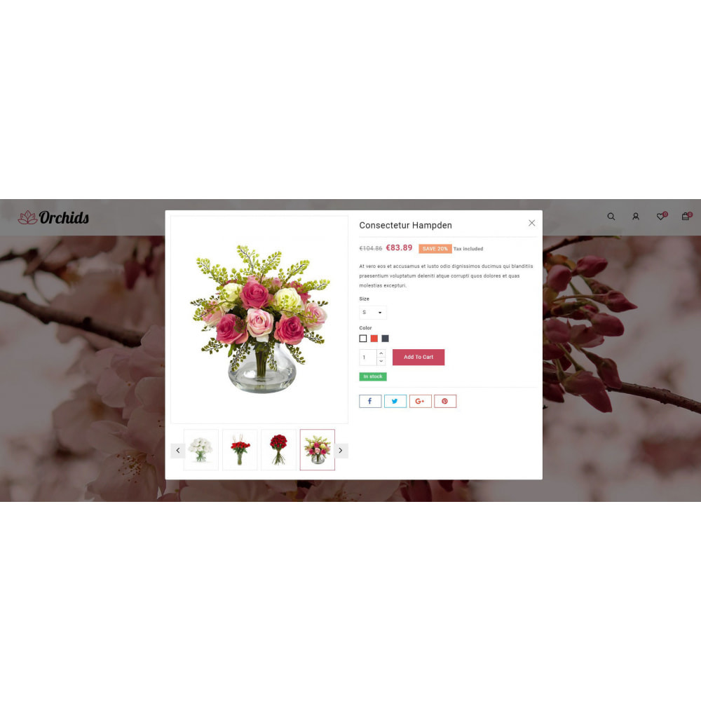 theme - Gifts, Flowers & Celebrations - Orchid - Flower Market - 7