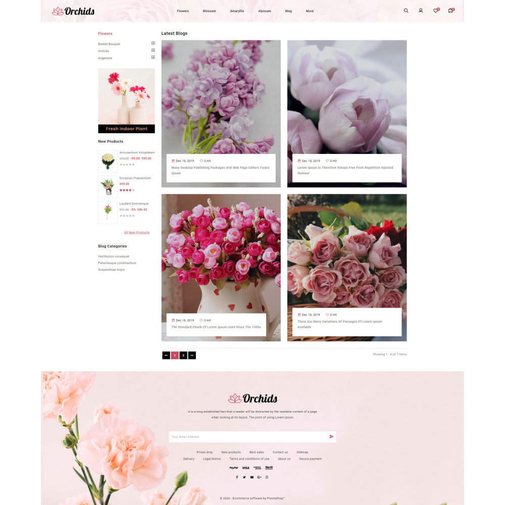 theme - Gifts, Flowers & Celebrations - Orchid - Flower Market - 9