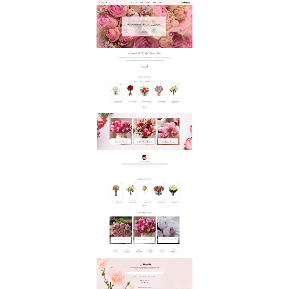 theme - Gifts, Flowers & Celebrations - Orchid - Flower Market - 10