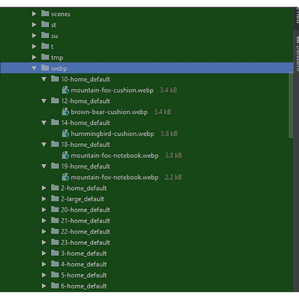 module - Rendimiento del sitio web - Webp convertor images PageSpeed optimization - 3