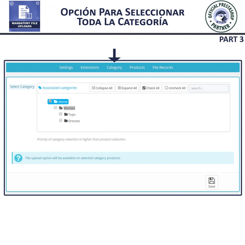 module - Informaciones adicionales y Pestañas - Carga De Archivo Obligatoria - 7