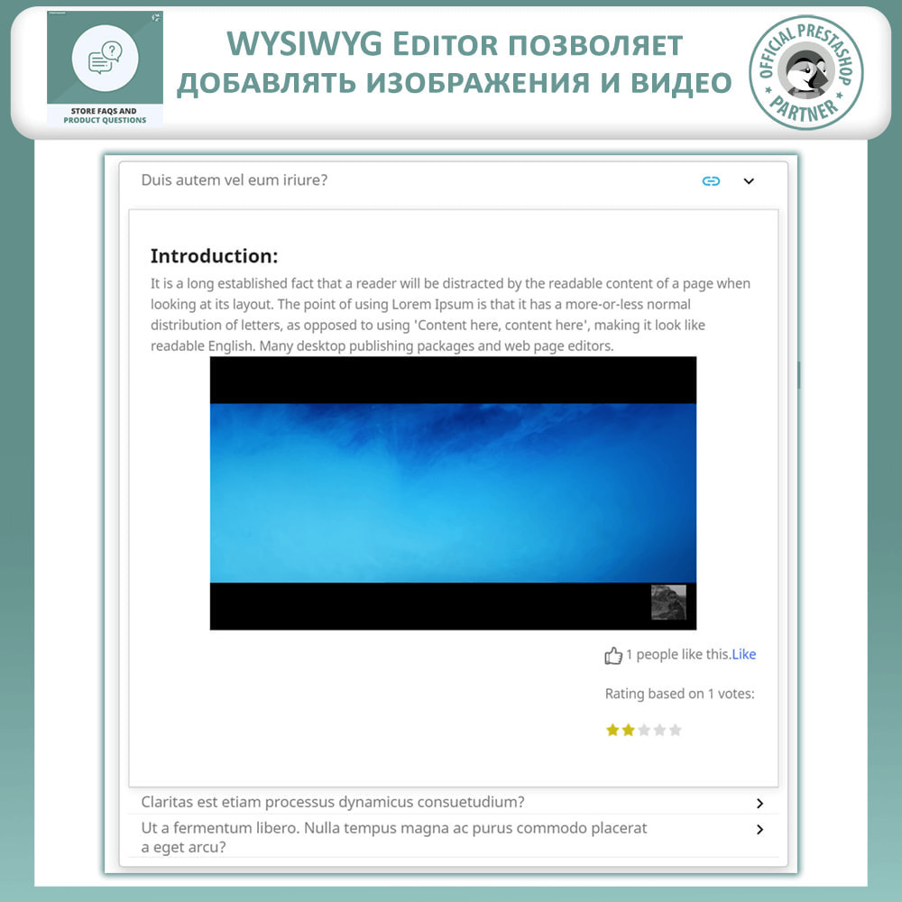 module - ЧАВО (FAQ) - Магазин FAQs + Товар FAQs (Часто задаваемые вопросы) - 6