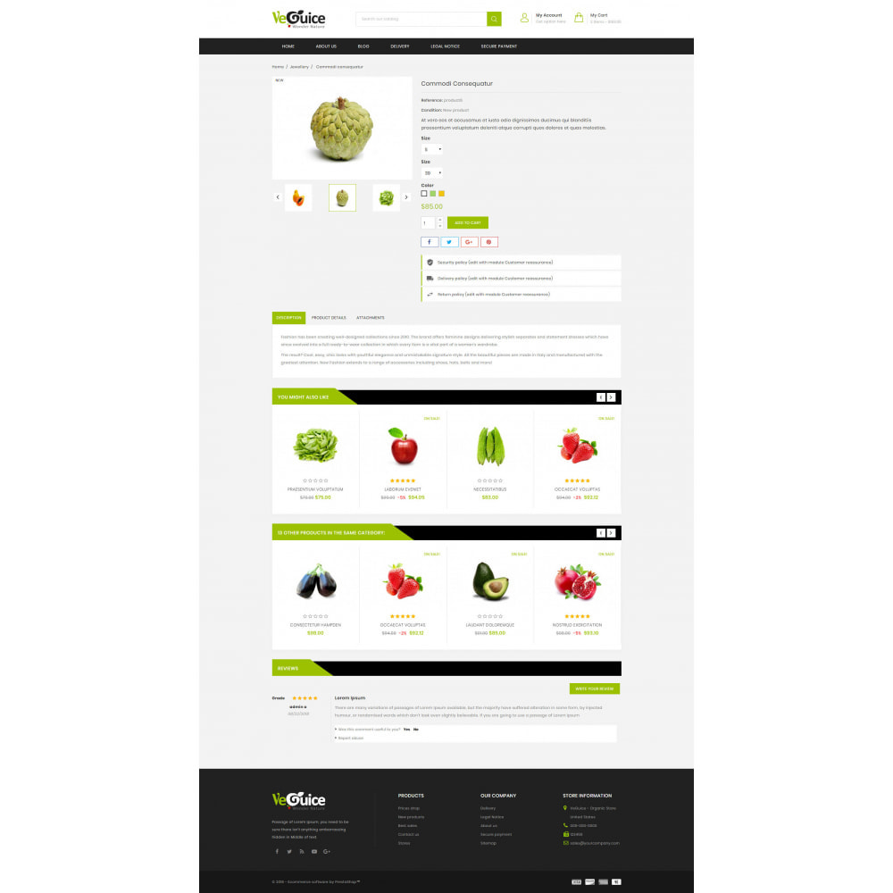 theme - Food & Restaurant - VeGuice - Organic Store - 5