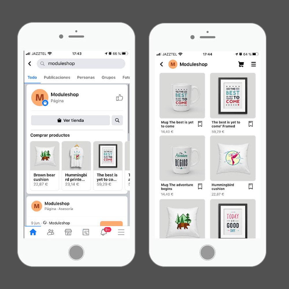 module - Товаров в социальных сетях - Facebook & Instagram Shop Catalog Importer - 6