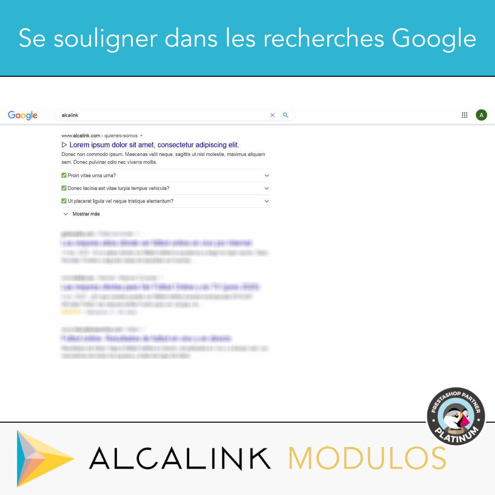 module - FAQ (questions fréquentes) - FAQ Schéma dans les catégories - SEO spécial Google - 3
