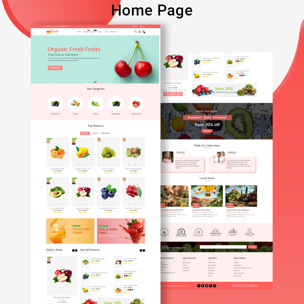 theme - Cibo & Ristorazione - Mavrick Organic Fresh Food Multipurpose Online Store - 2