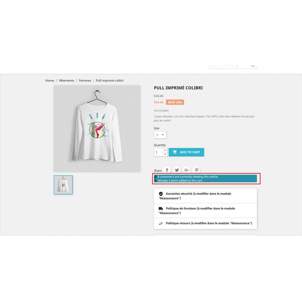 module - Дополнительной информации и вкладок товара - Посетите счетчик на странице продукта - 2