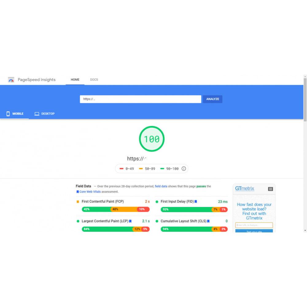 module - Rendimiento del sitio web - GTmetrix Pro  - Speed optimization - 6