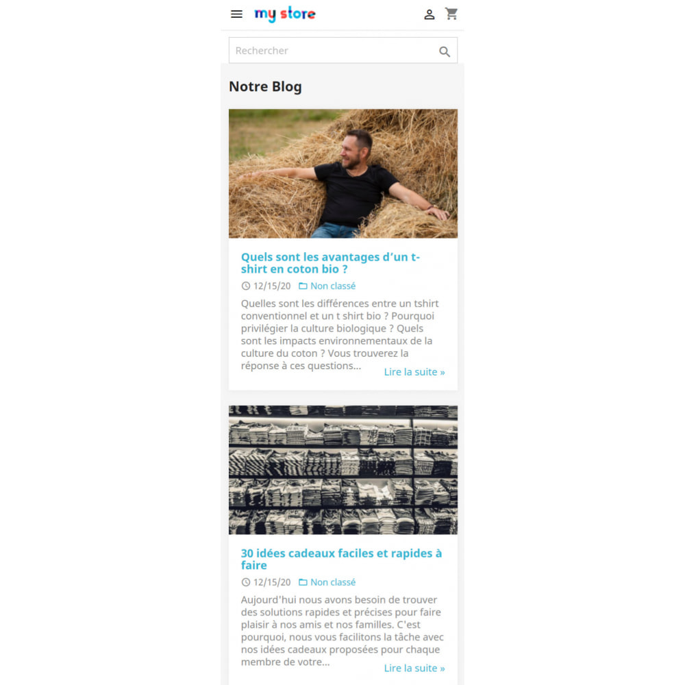 module - Blog, Forum & Actualités - WordPress Intégration - 2