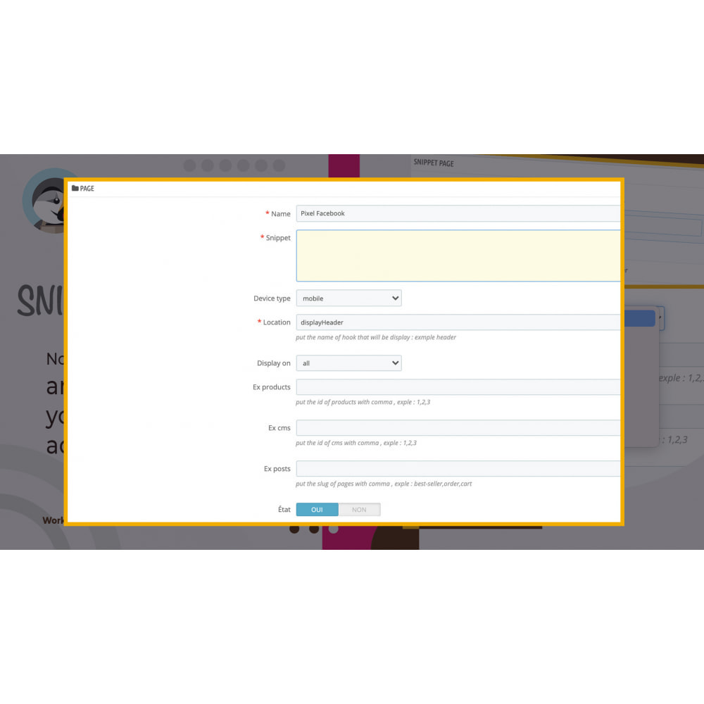 module - Outils d'administration - Snippet Code Manager - 3