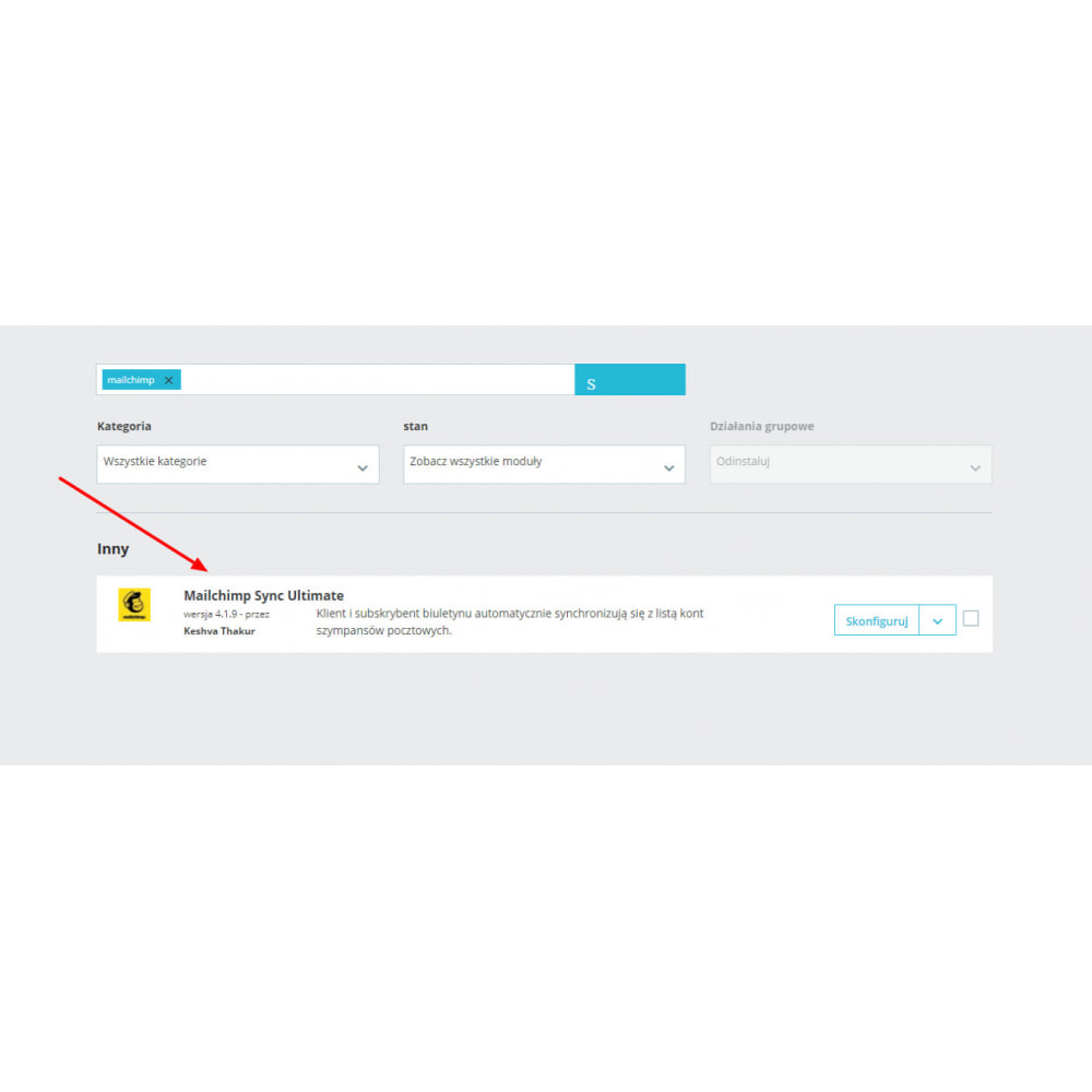 module - Newsletter & SMS - Mailchimp Sync Ultimate - 1
