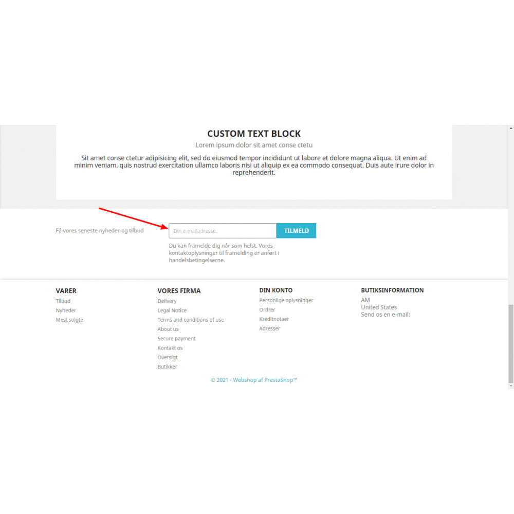 module - Newsletter & SMS - Mailchimp Sync Ultimate - 3