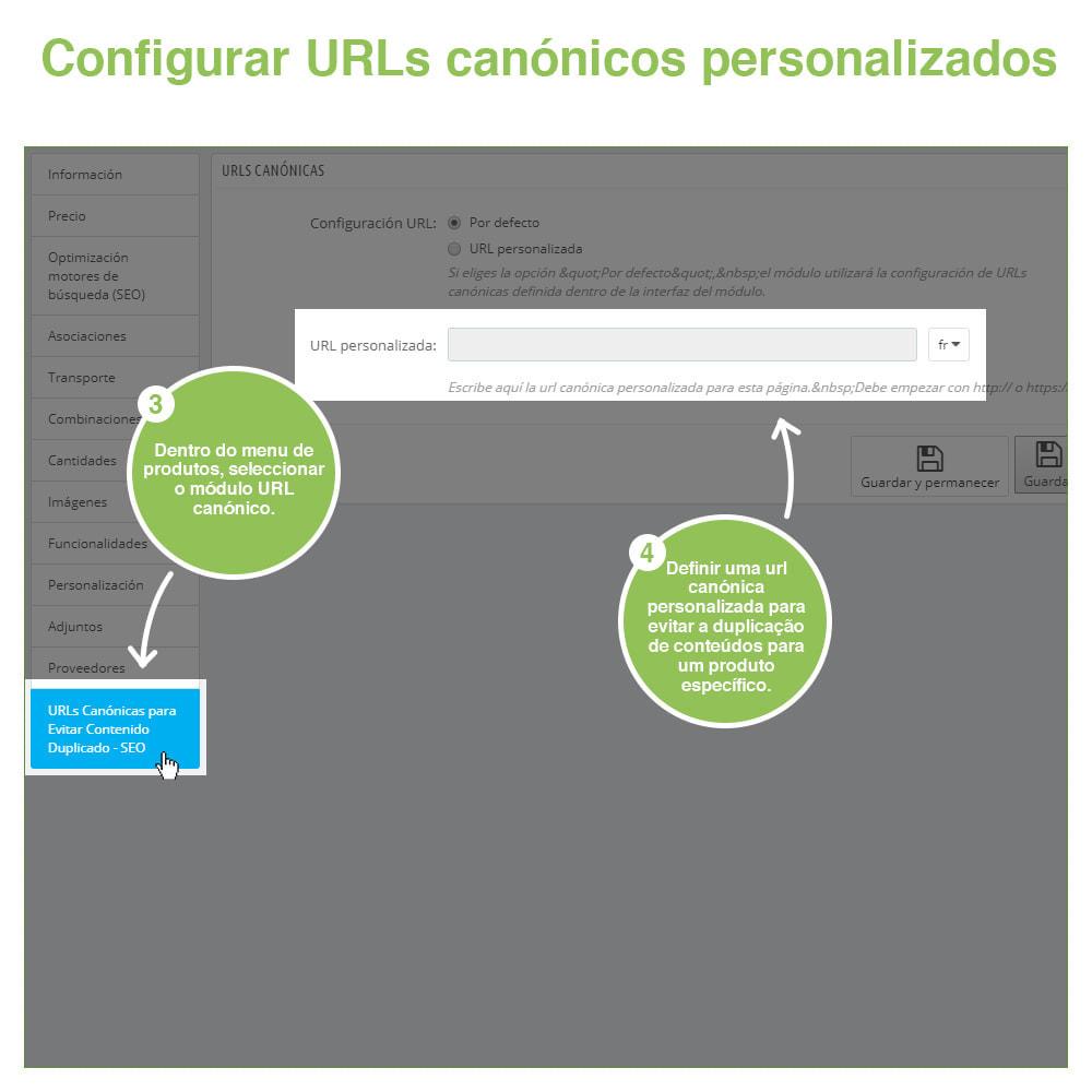 module - Gestão de URL & Redirecionamento - URLs canônicos para evitar conteúdo duplicado - 11