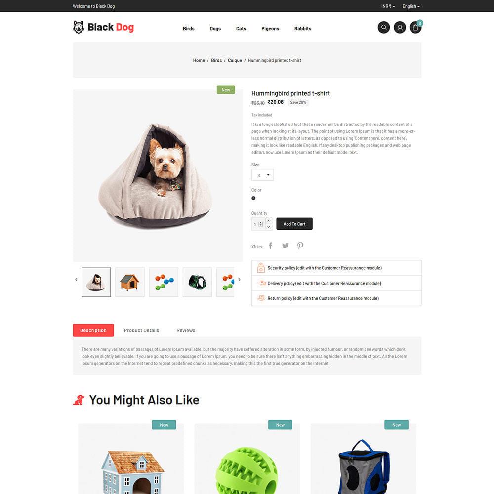 theme - Животные и домашние питомцы - Black Dog - Bird Pet Animal Food  Store - 5