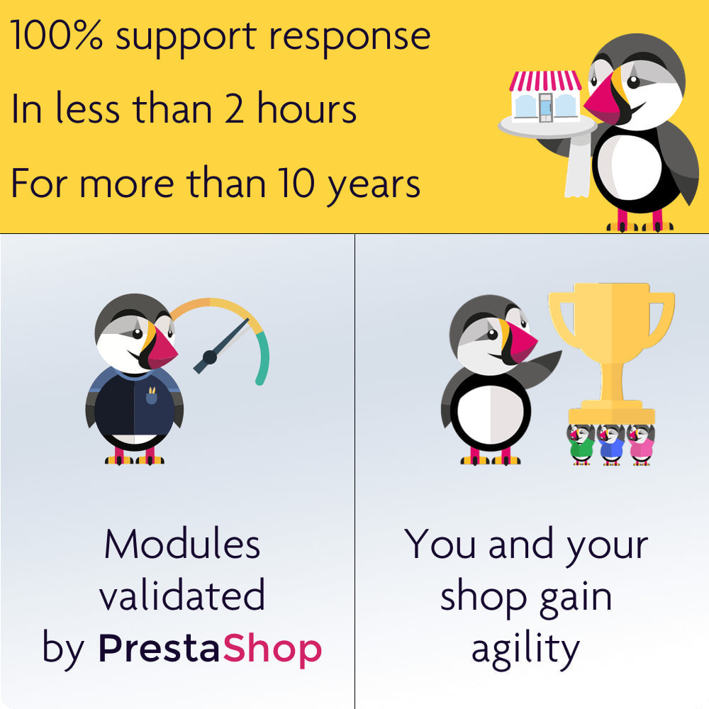 module - Zarządzanie cenami - Display dynamic prices by quantity and more - 8