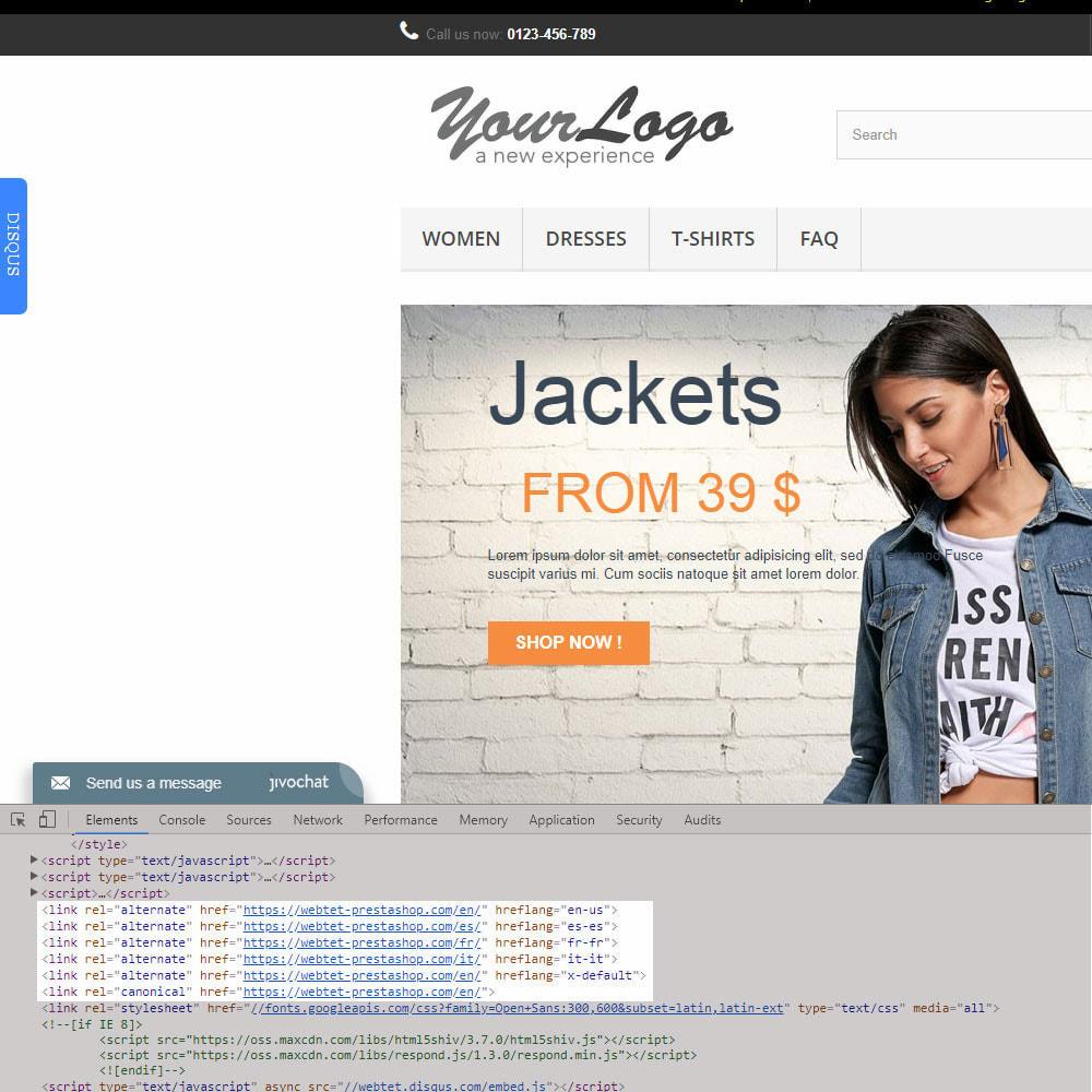 module - Gestão de URL & Redirecionamento - SEO Google Hreflang Tag and Canonical URLs Tag - 4