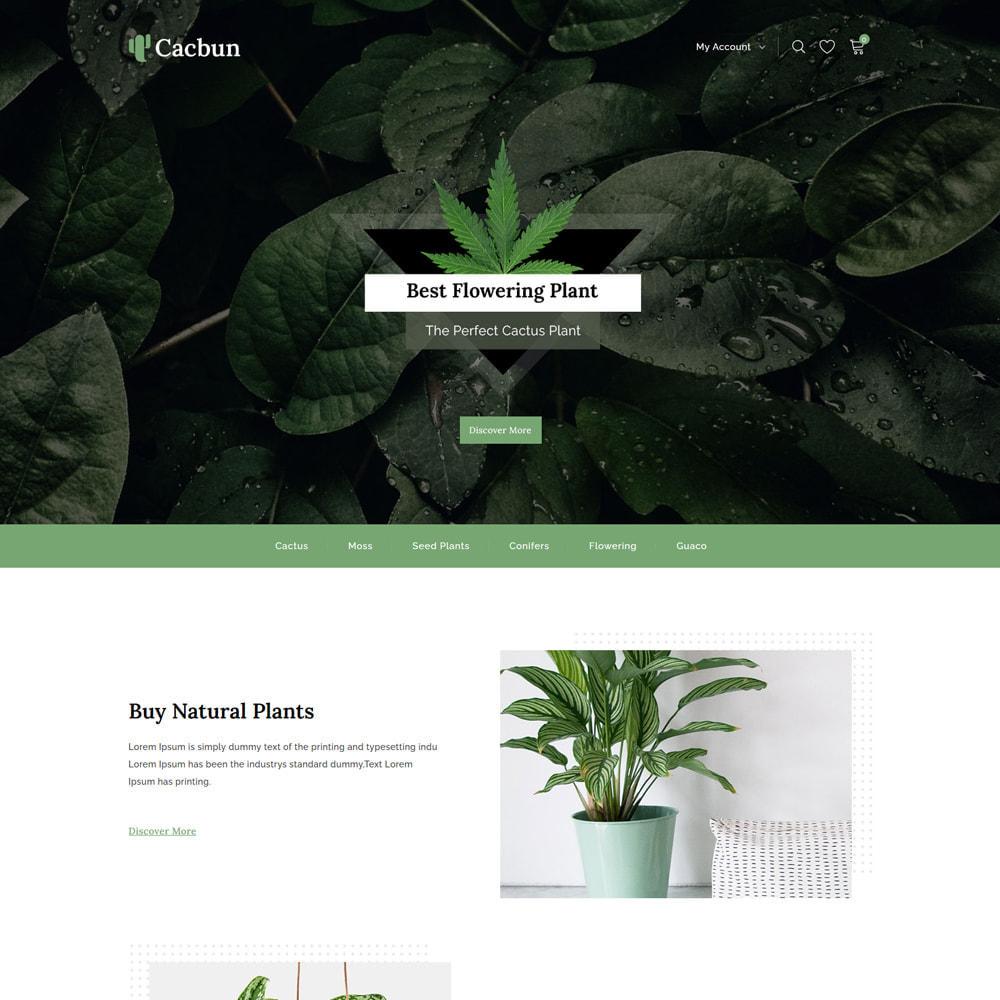 theme - Hogar y Jardín - Cacbun - Nursery Plants and Garden Store - 2