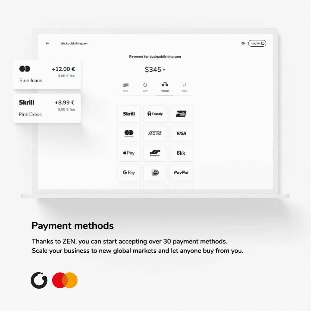 module - Платежи и платежные системы - ZEN.com Official - 2