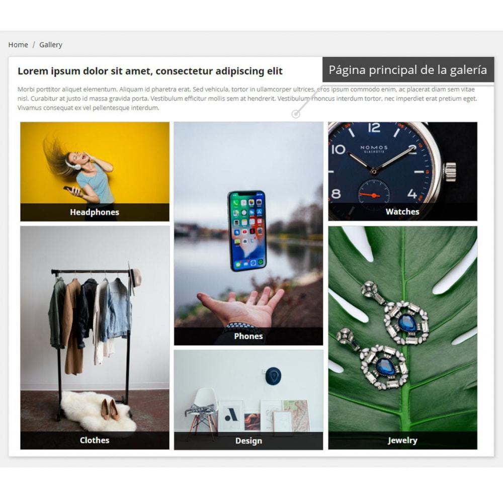 module - Sliders y Galerías de imágenes - Professional Gallery - 1