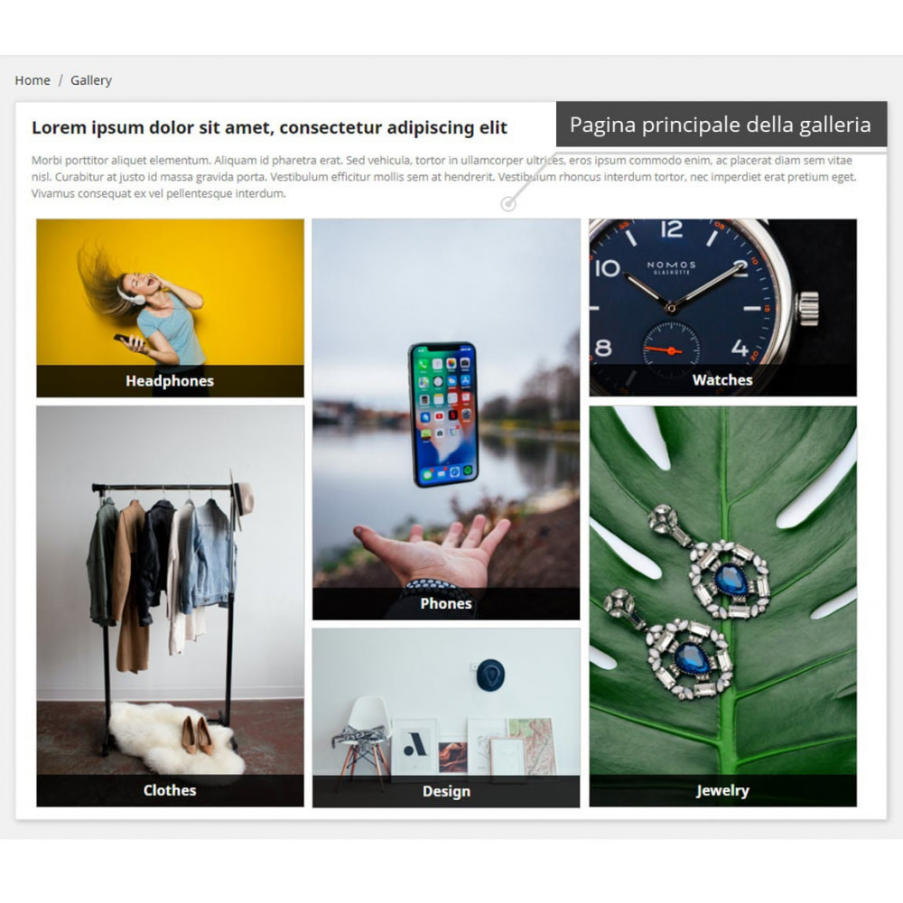 module - Slider & Gallerie - Galleria professionali ( images gallery ) - 1