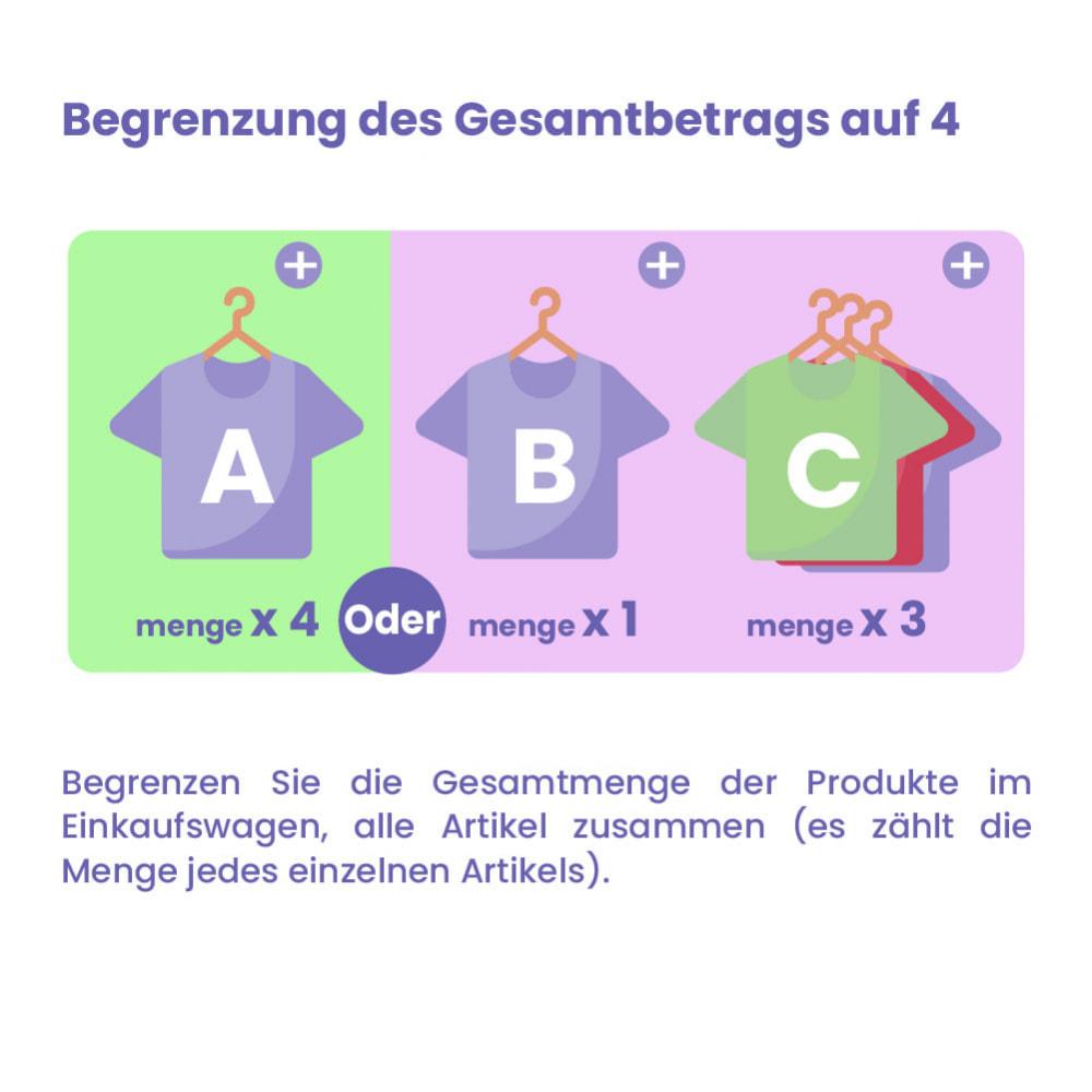 module - Anmeldung und Bestellvorgang - Modul Begrenzung des Warenkorbs - 3