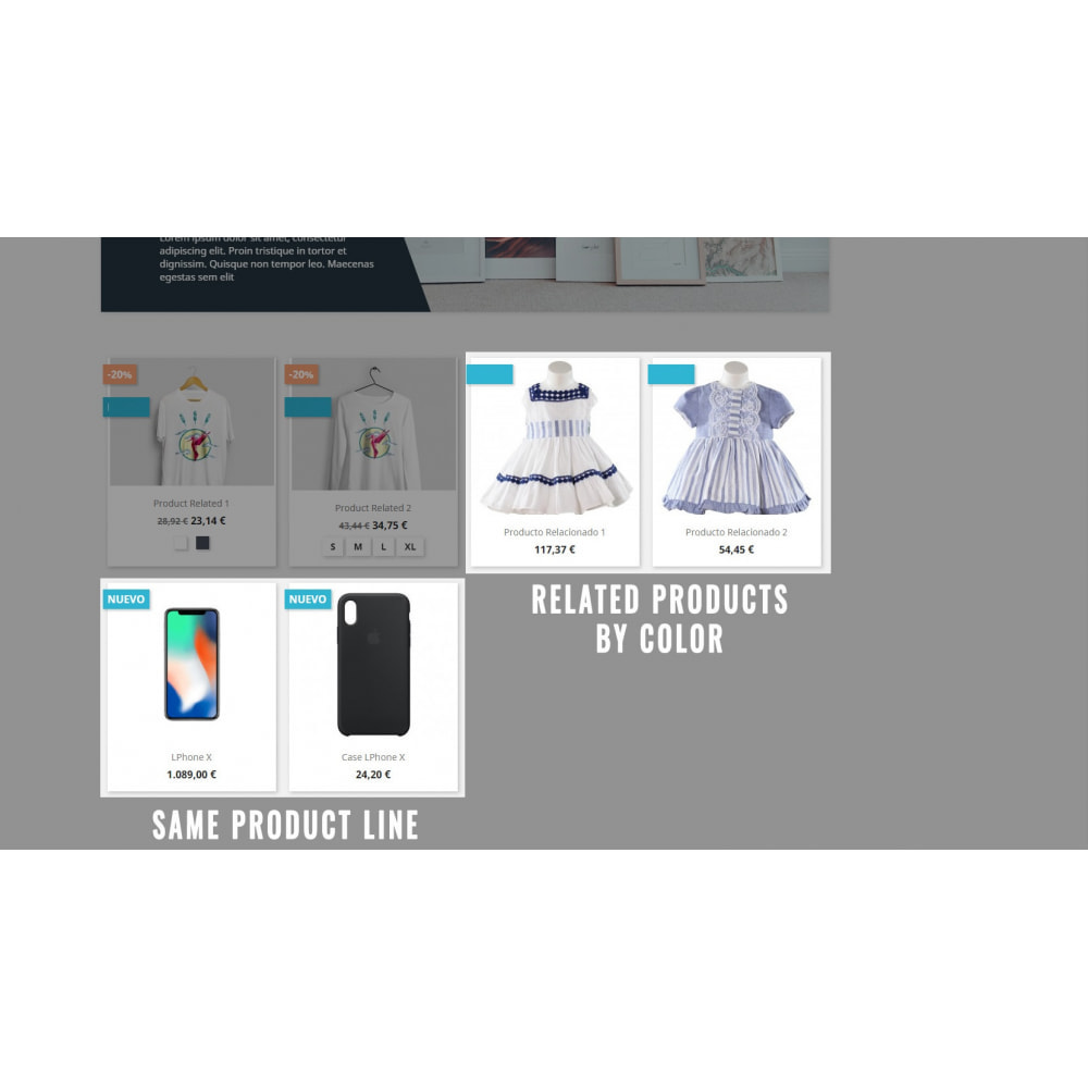 module - Additional Information & Product Tab - Related Products - 3