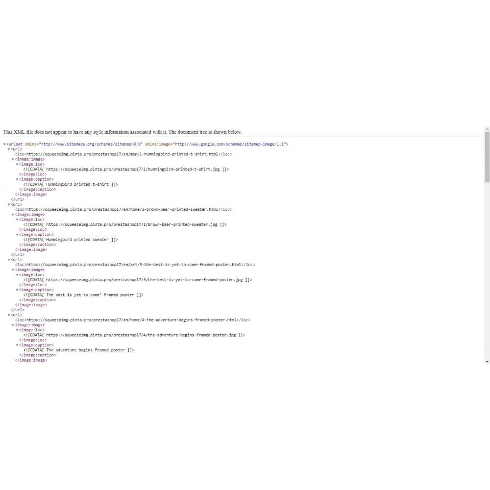 module - Visuels des produits - Image Compress with Squeezeimg + Convert to webp, jp2 - 17