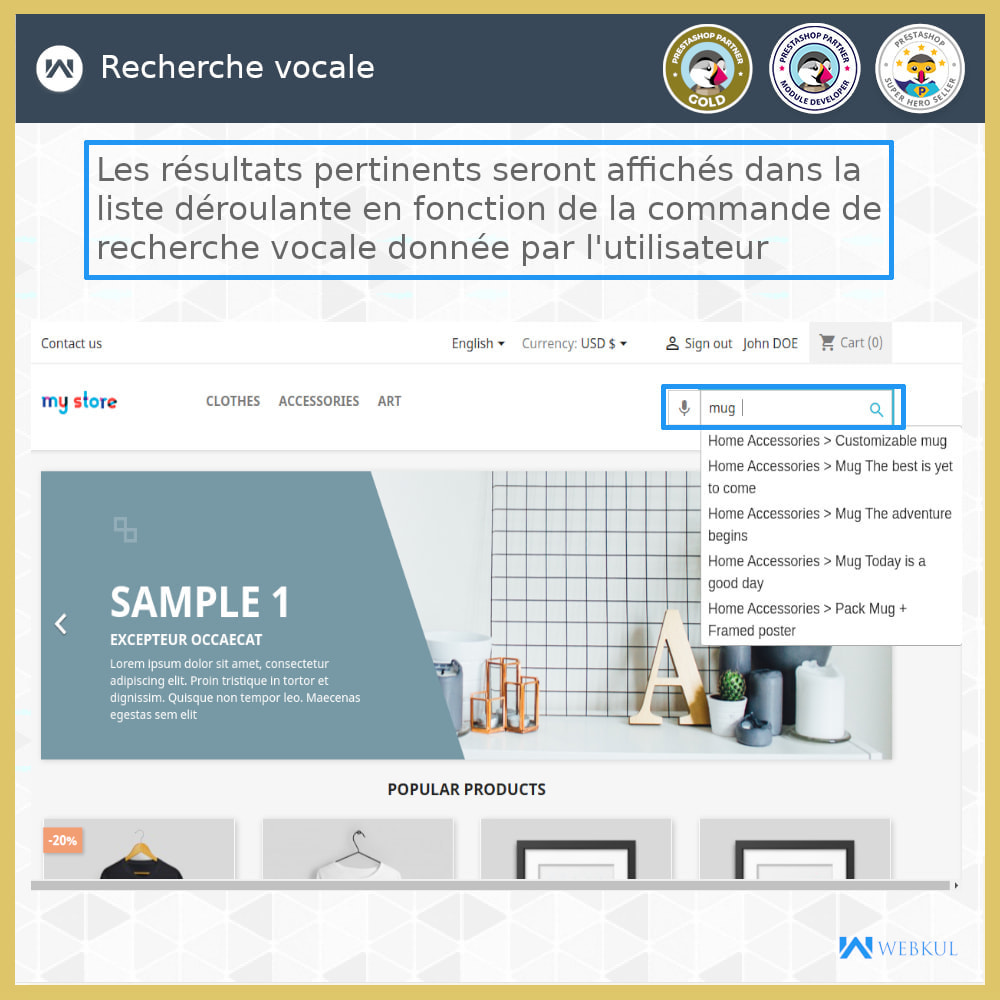 module - SEO (référencement naturel) - Recherche Vocale | Système de Reconnaissance Vocale - 1