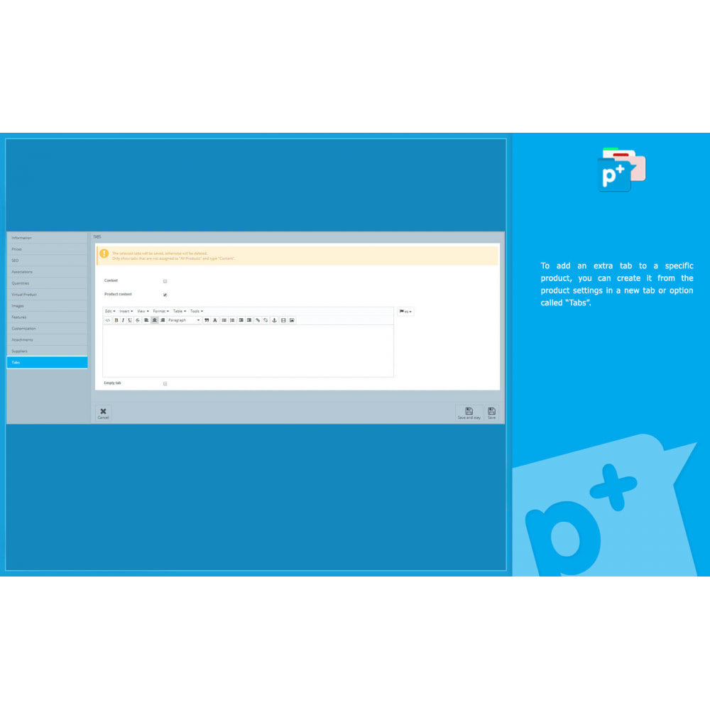 module - Zusatzinformationen & Produkt-Tabs - Product Extra Tabs - Tabs additional information - 11