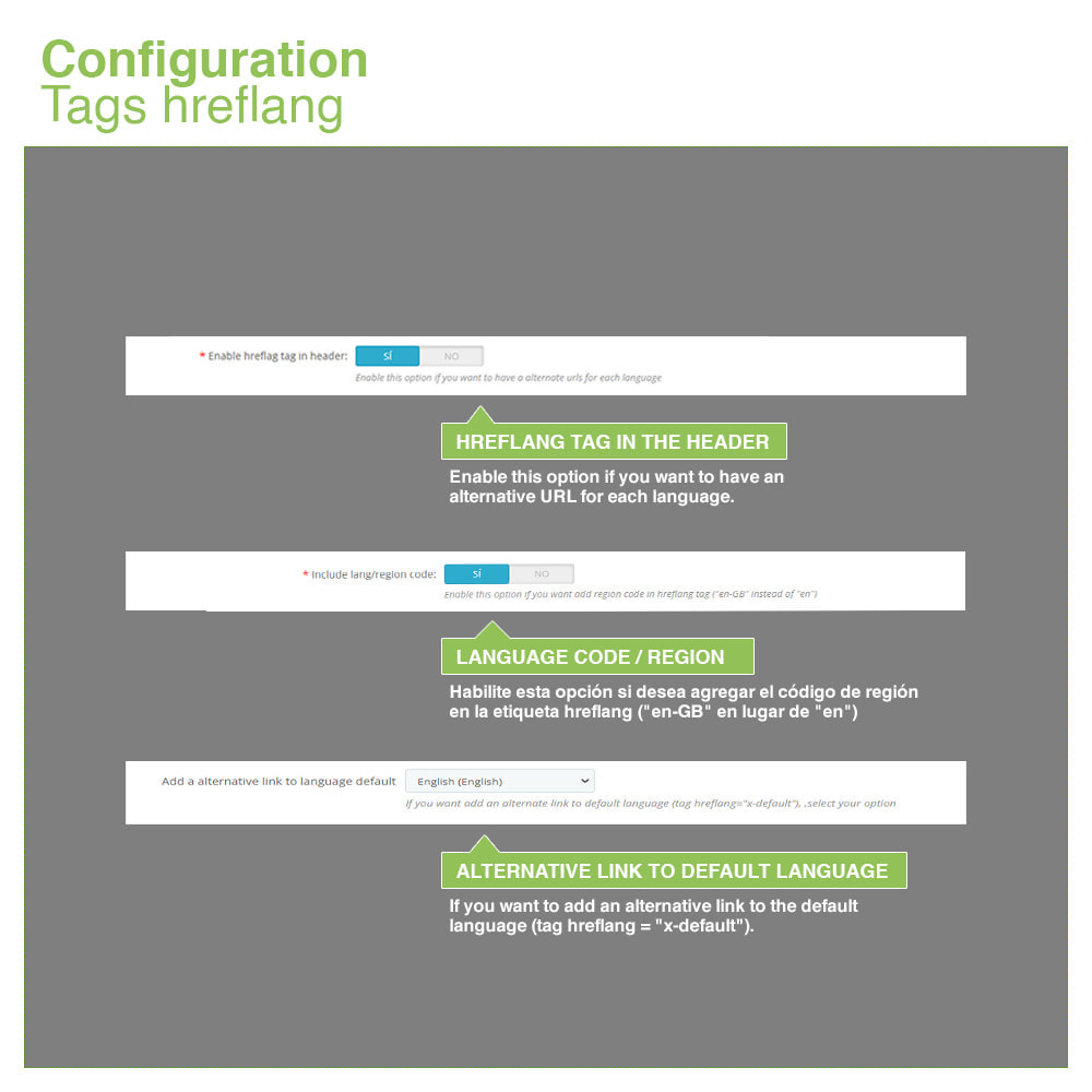 module - Управления адресами URL и перенаправлением - Canonical SEO URLs + Google Hreflang Pro - 12