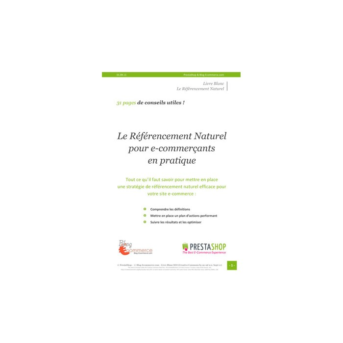 other - Services - Guide pratique du référencement naturel - SEO - 1