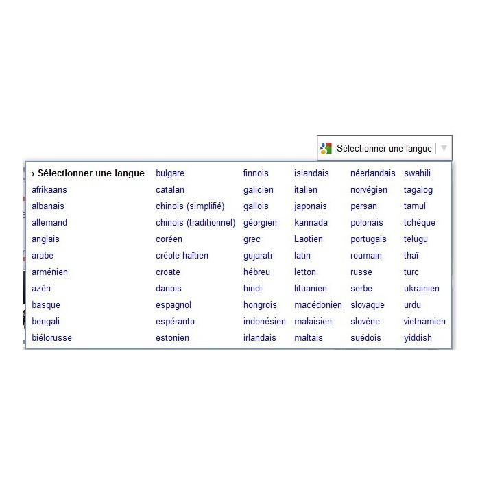 module - International & Localisation - google translation - 2