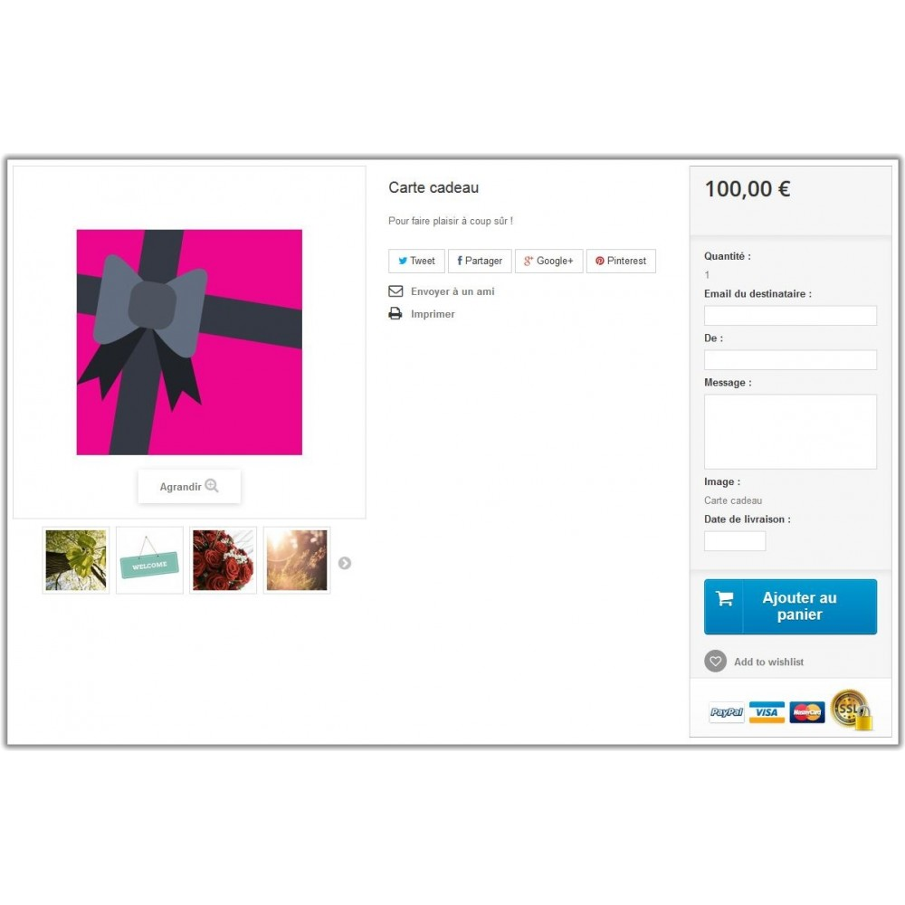 bundle - Les offres du moment - Faites des économies ! - Trafic (Pack) : SEO Expert + Carte Cadeau - 2