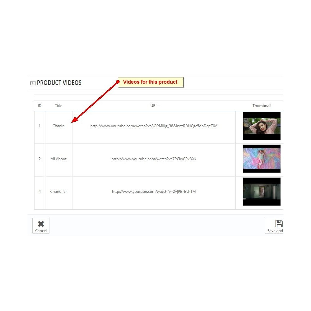 module - Videos & Music - Youtube Product Videos - 6