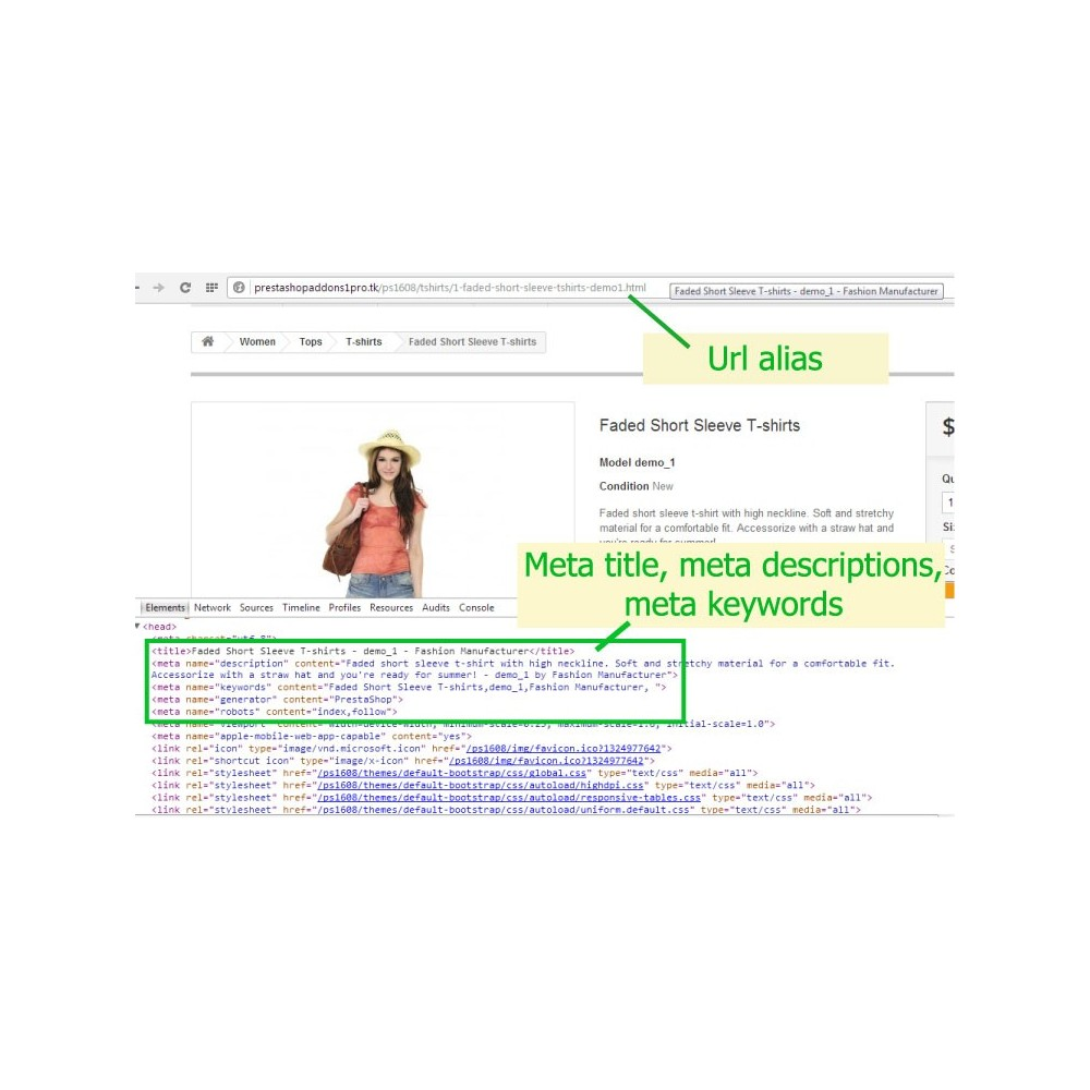 module - SEO (référencement naturel) - [SEO Ultimate] Advanced URL, META Tags And Social - 2