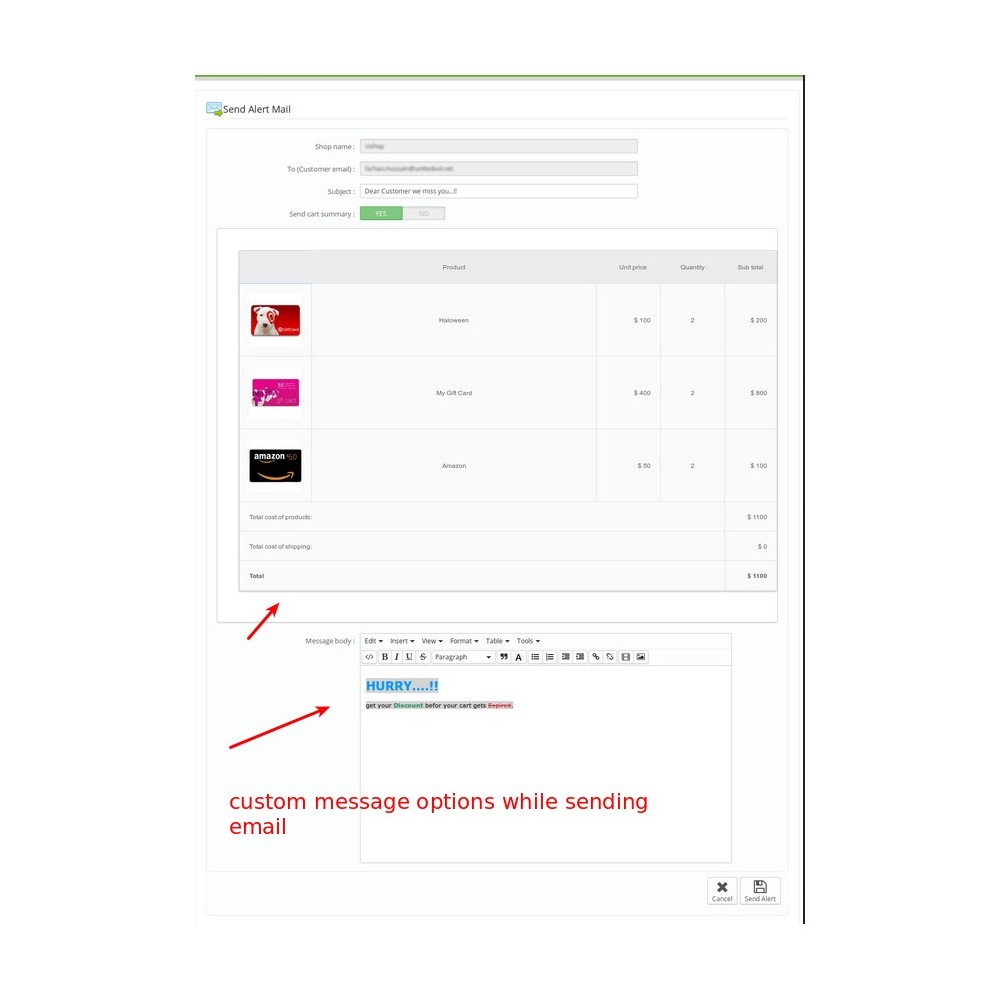 module - Remarketing & Opuszczone koszyki - Abandoned Cart Reminder, Send Auto Email with Discount - 3