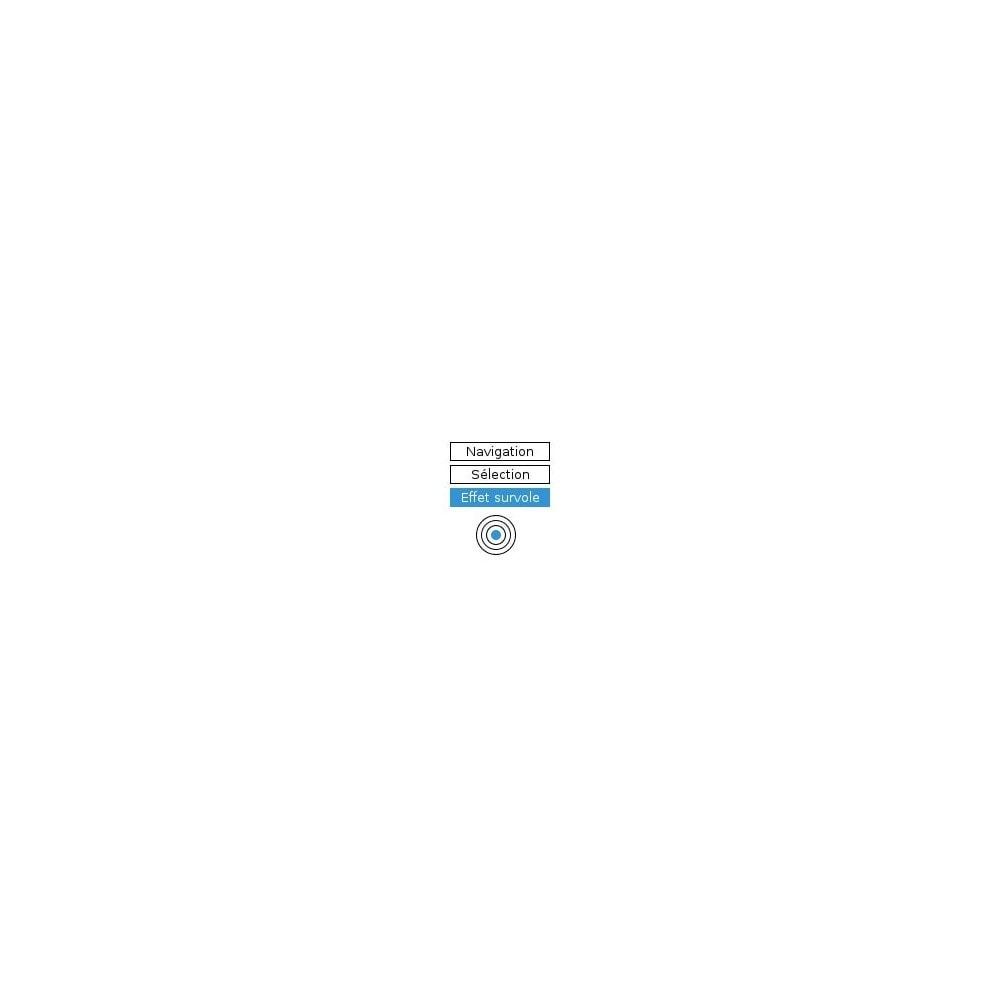 module - Personnalisation de Page - Theme Customizer v2 : personnalisez votre thème - 2