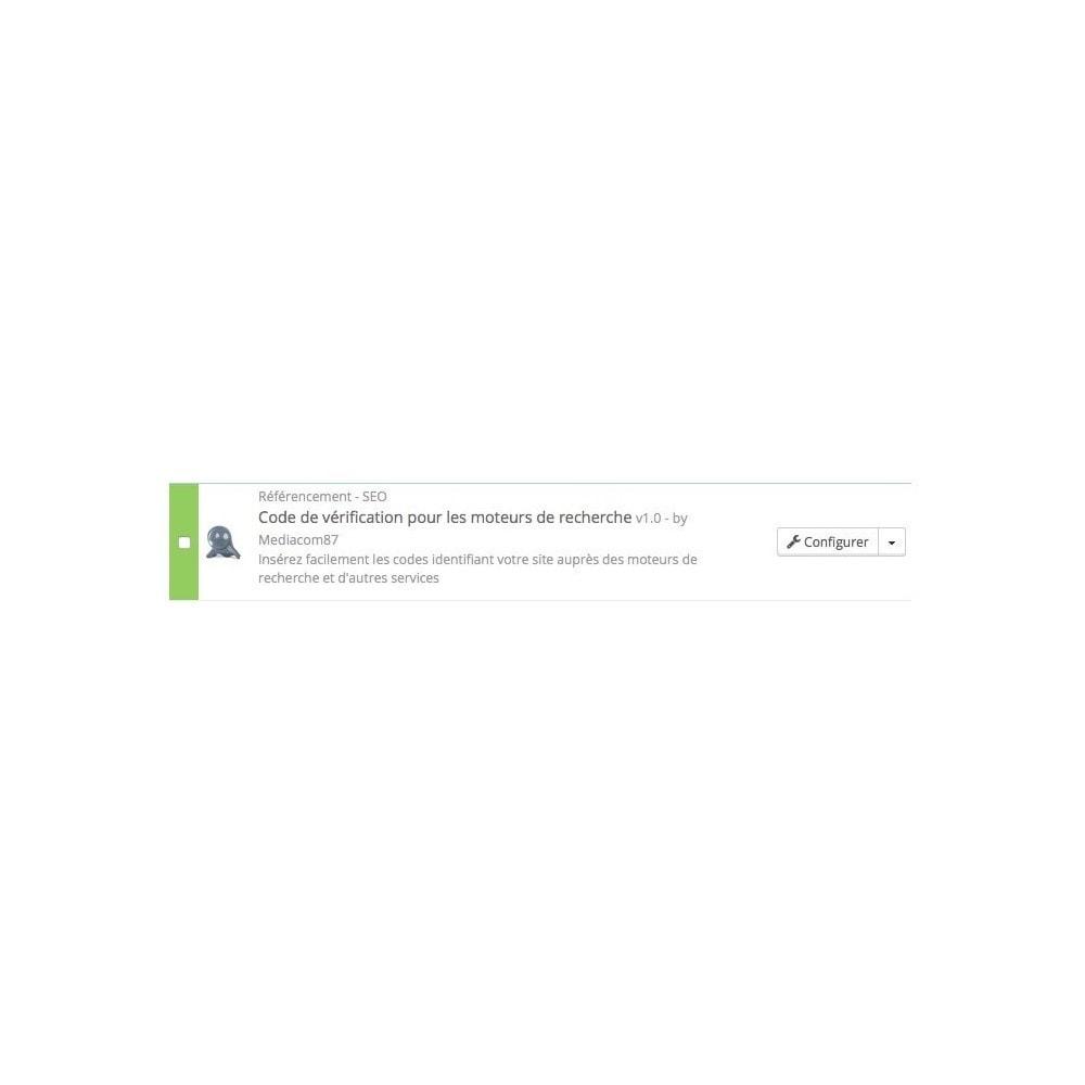 module - SEO (référencement naturel) - Intégration codes de vérification des outils webmasters - 2