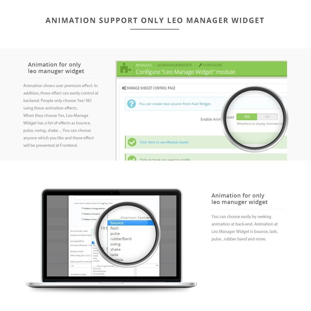 module - Page Customization - Leo Manage Widget - 5