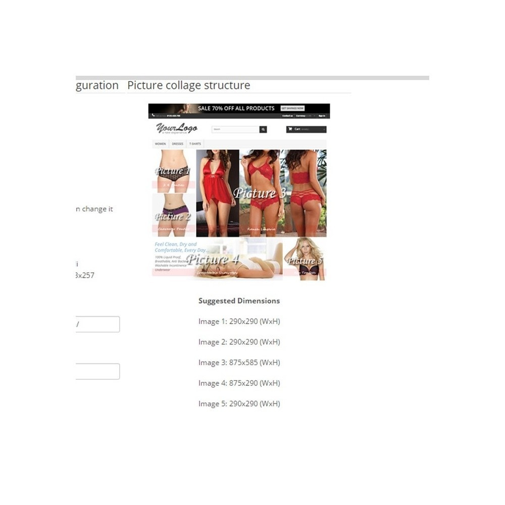 module - Page Customization - Responsive Homepage Layout 3 - Lingerie - 4